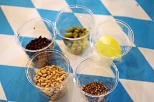 Od góry: chmiel, cytryna, kolendra, słód pilzneński isłód barwiący