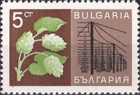 Chmiel ijego uprawa. Bułgaria, 1967 (źródło: Colnect.com)