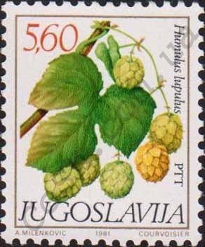 Jugosławia. Chmiel. Rok 1981 (źródło: cosh.com.ua)